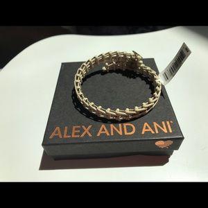 Alex and Ani wrap around bangle